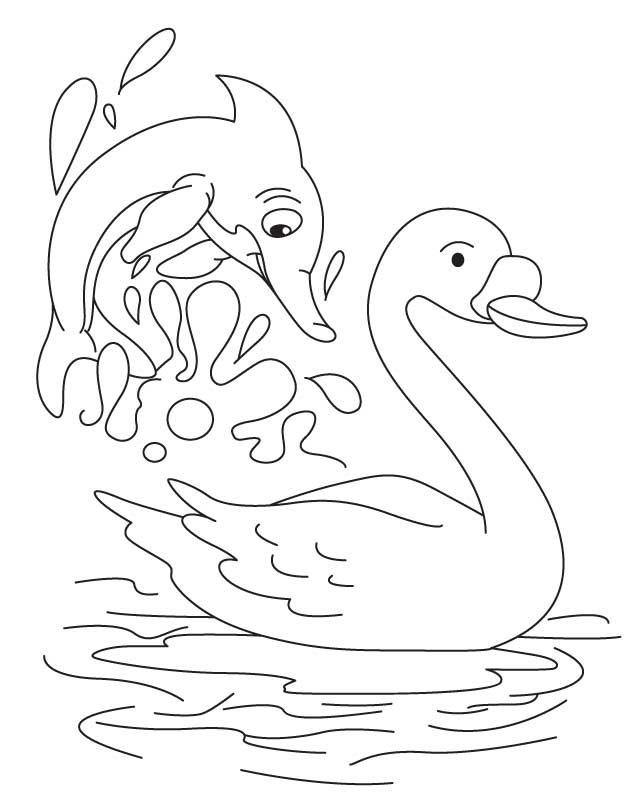 Swan and dolphin coloring page