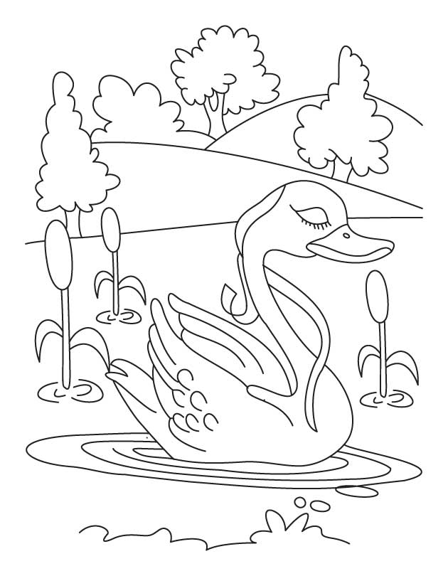 Swan in lake coloring page