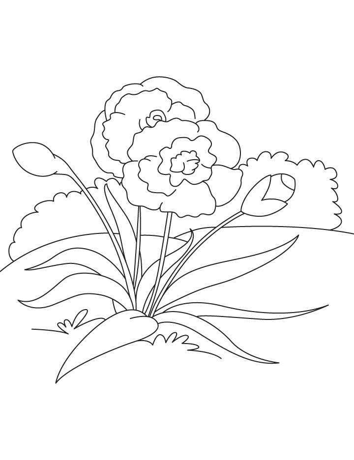 Symbol of socialism coloring page