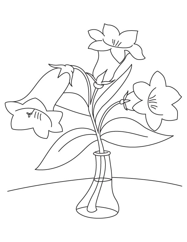 Three bellflower coloring page
