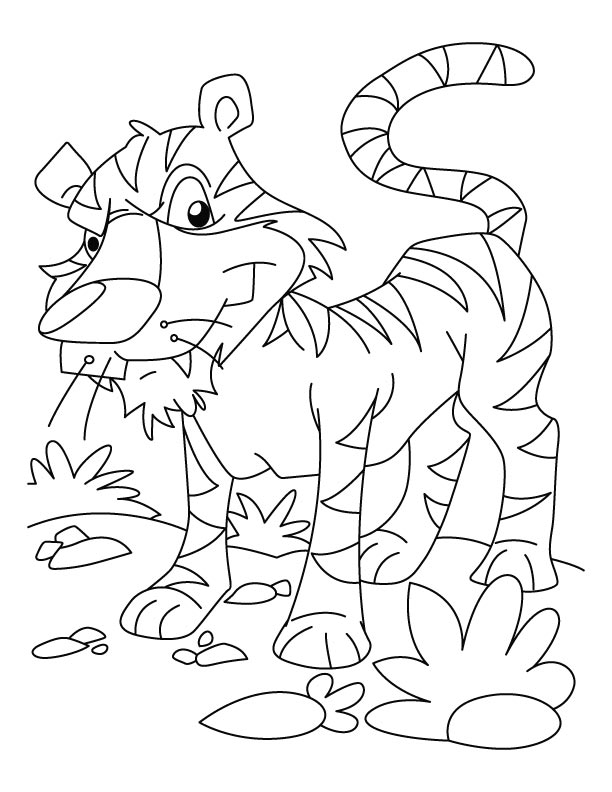 Sumatran tiger coloring pages