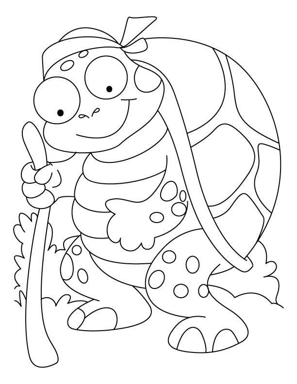 An old tortoise coloring pages