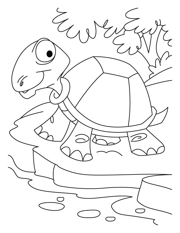 Thirsty tortoise coloring pages