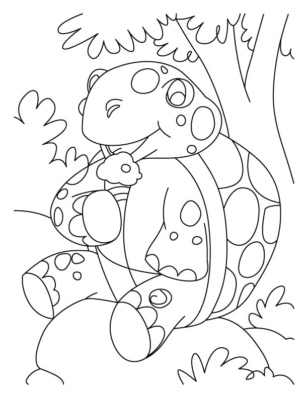 Resting tortoise coloring pages