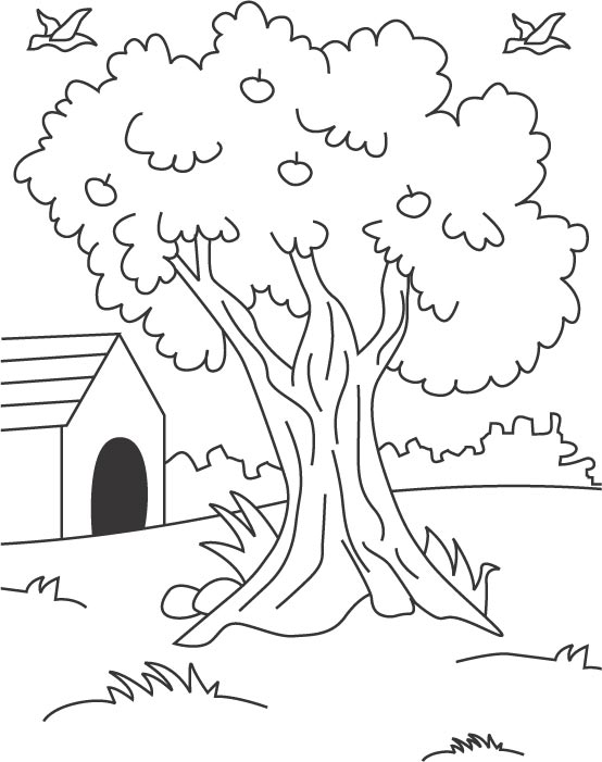 Tree Coloring Page Download Free Tree Coloring Page For Kids Free Tree Coloring Image