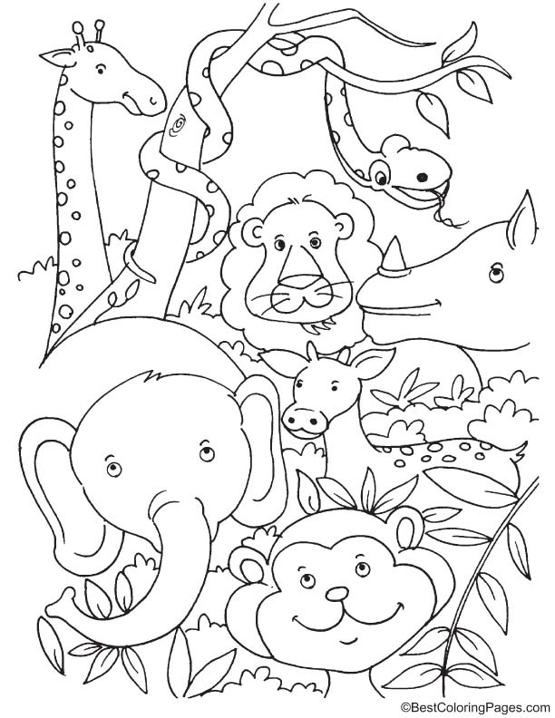 Tropical rainforest animals coloring page
