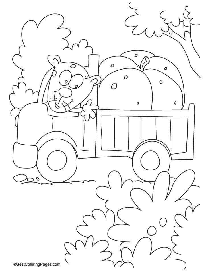 Huge pumpkin on truck coloring page