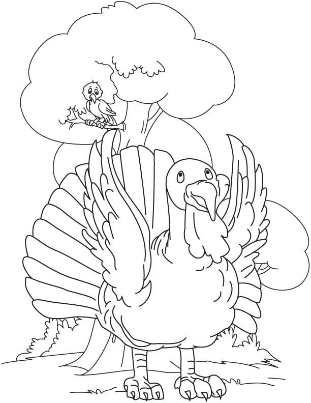 Turkey in jungle coloring page