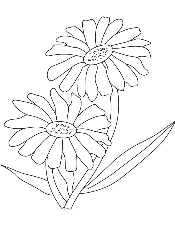 Two red daisy coloring page