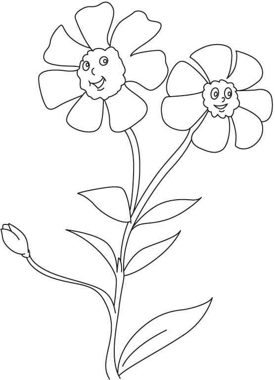 turkish coloring pages images