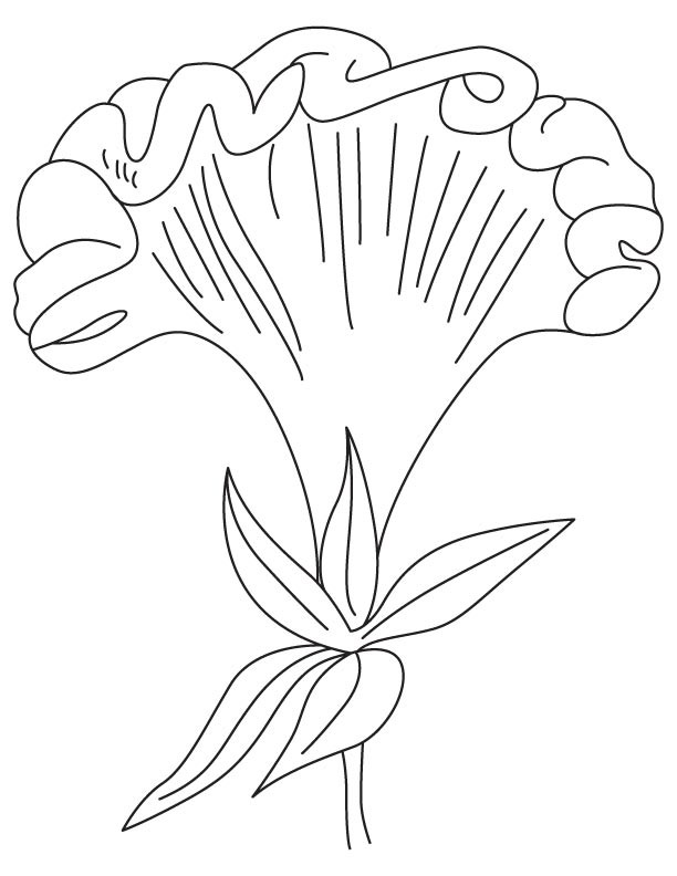 velvet coloring pages - photo#3