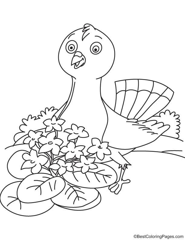Violet bird coloring page