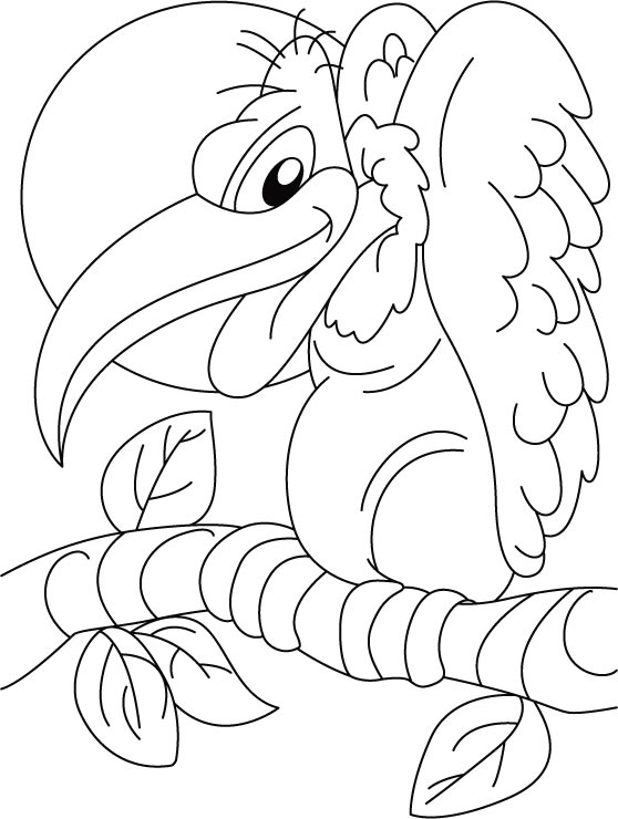 Vulture Coloring Pages Kidsuki