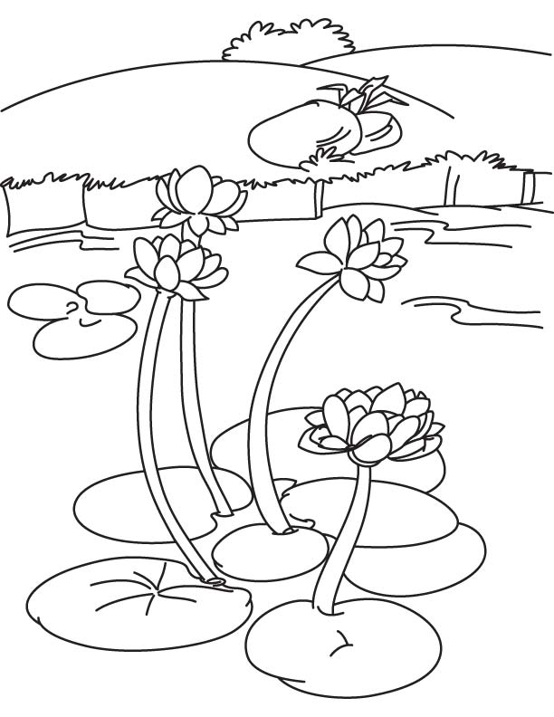 coloring pages on lake - photo#24