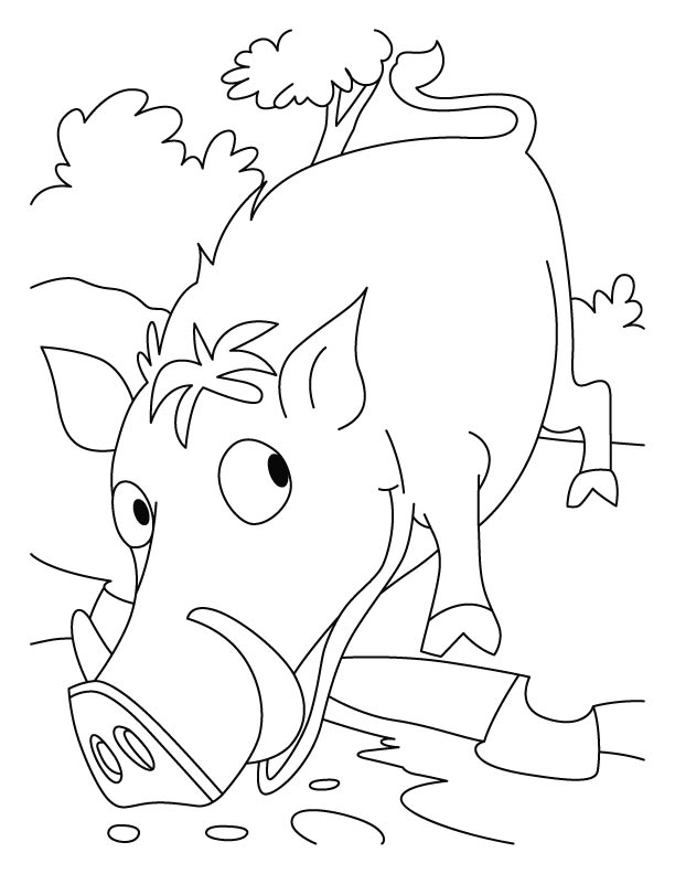 Pig to wild boar coloring pages