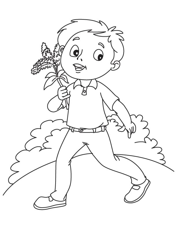 solidago goldenrod coloring page   Young with Goldenrod coloring page    Goldenrod Coloring Page