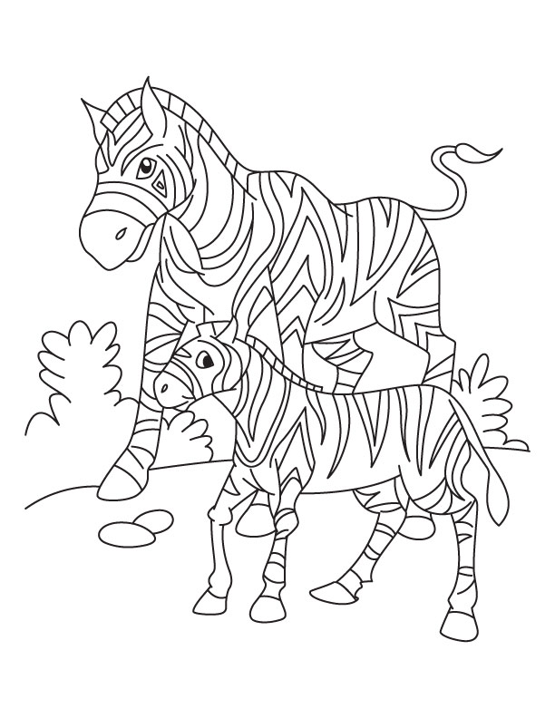 a zebra with her young looking for grass in south africa coloring page - Zebra Coloring Pages