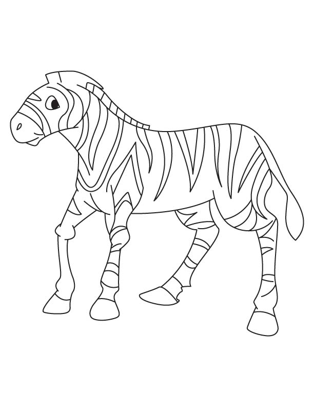 Zebra foal coloring page