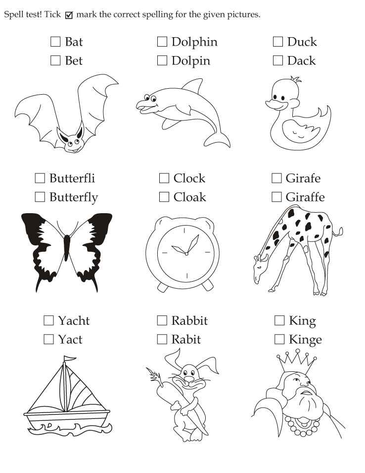 Download English Activity Worksheet Spell Test Tick Mark The
