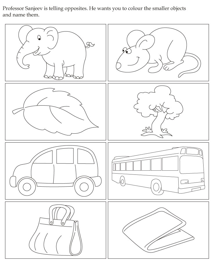 Color the smaller objects and name them