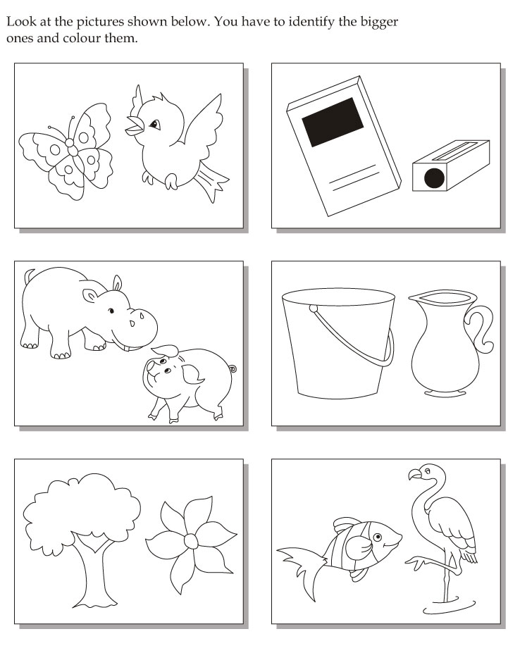 Look at the pictures shown below then identify the bigger ones and color them