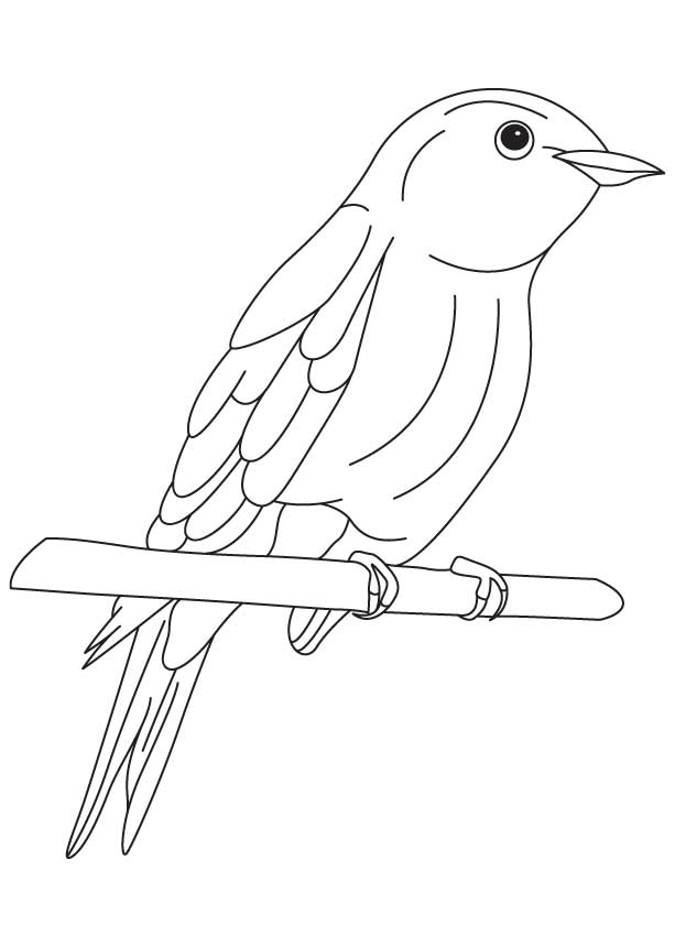 It's just a graphic of Slobbery Bluebird Coloring Page