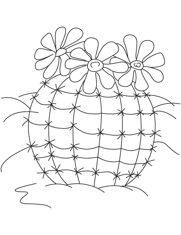 Flowering cactus plants coloring page   Download Free ...