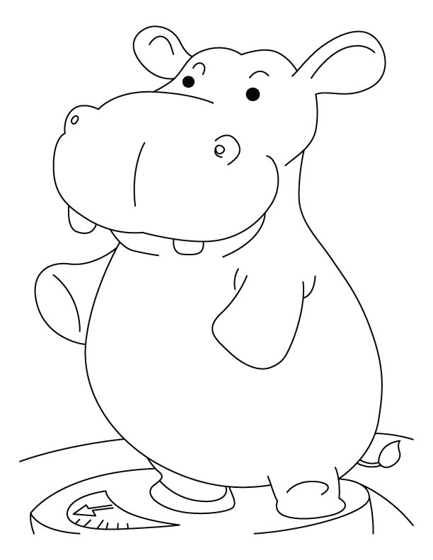 Heavy Hippopotamus Coloring Pages Download Free