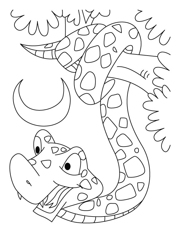 Year Of The Snake Coloring Pages Download Free Year Of The Snake Coloring Pages For Kids Best Coloring Pages